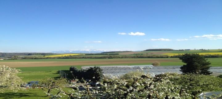 Switzerland views