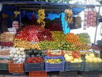 The Ayurveda nutrition – a big science !