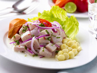Pilotfish eating Ceviche